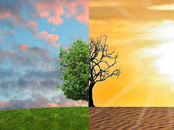 climate change, human influence, global warming, news for kids, kids news