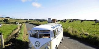 Electric version, classic microbus, Camper Van, Volkswagen