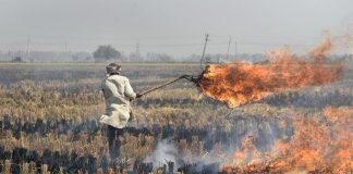 stubble burning, Gurgaon, Gurugram, Nirvana, Sector 50, Pollution, Pollutants, India, Haryana, Government, Municipal authorities gurgaon, Environmental ministry, India