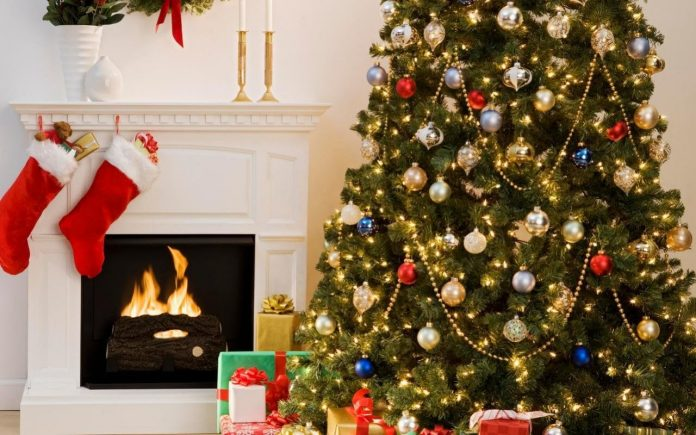 christmas tree, decoration, lights, flowers, celebrations, ornaments,