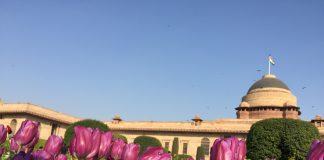 Mughal Gardens, Rashtrapati Bhavan, Tulips, Circular, Spiritual, Herbal, Bonsai, Tactile, Musical gardens, NewsMobile, President, Ram Nath Kovind, Mobile News, India, New Delhi