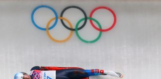Winter Olympics, South Korea, Luge, Sledging, Racoon dog, National Olympic committee, Pyeong Chang, South Korea