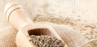 Jeera, cumin seed, Indian spices, India, weight loss, BMI, Healthy lifestyle,