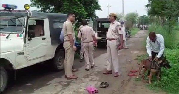 Rajasthan, mobocracy, Alwar, Muslim, cow vigilantism, lynching, Prime Minister Modi, Lalawandi area, Lok Sabha, Pehlu Khan, Rajasthan Chief Minister, Vasundhara Raje, Supreme Court, mob lynching, Narendra Modi,