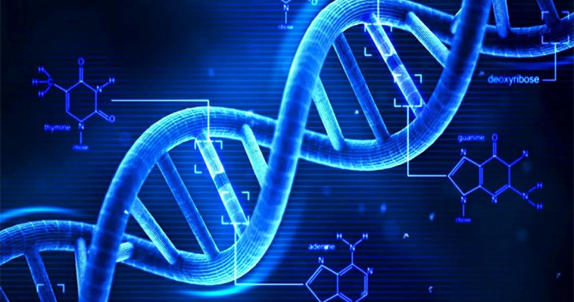 dna profiling can help victims of sexual crime get swifter justice
