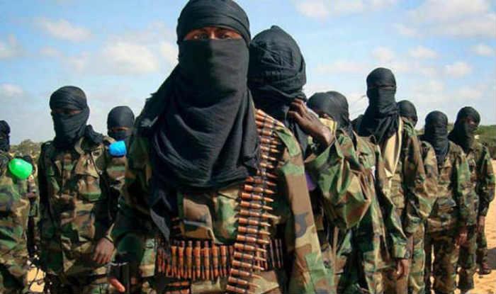 Hizbul Mujahideen, Burhan Wani, social media, terror organisation, Shams ul Haq Mengnoo, IPS Officer, brother`
