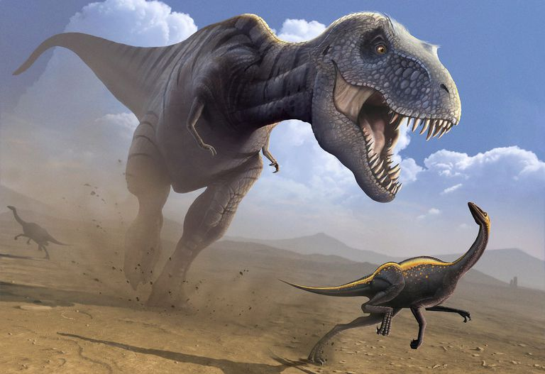 Dinosaurs are more calorie-conscious than humans
