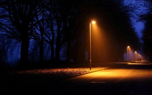 Night light affects interaction of species