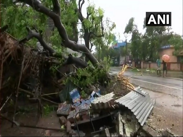 Cyclone Gaja leaves Tamil Nadu houses damaged and trees uprooted