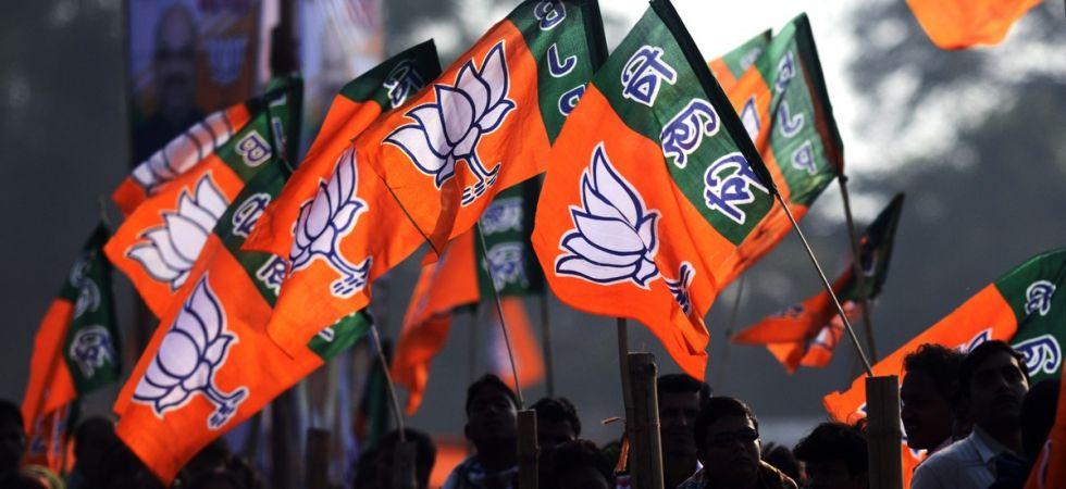 BJP< BJP flag,amit sah, bjp symbol