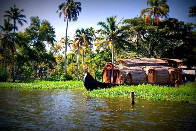 travel and tourism, lifestyle, travel 2019, CNN travel destinations 2019, Kerala, Gods own country, backwaters, natural disasters, India, NewsMobile