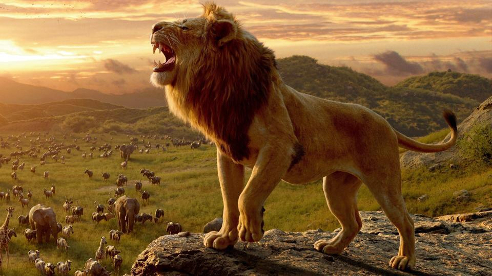 The Lion King, Box Office Collection, Shah Rukh Khan, Mufasa, Shimba, News Mobile, News Mobile India