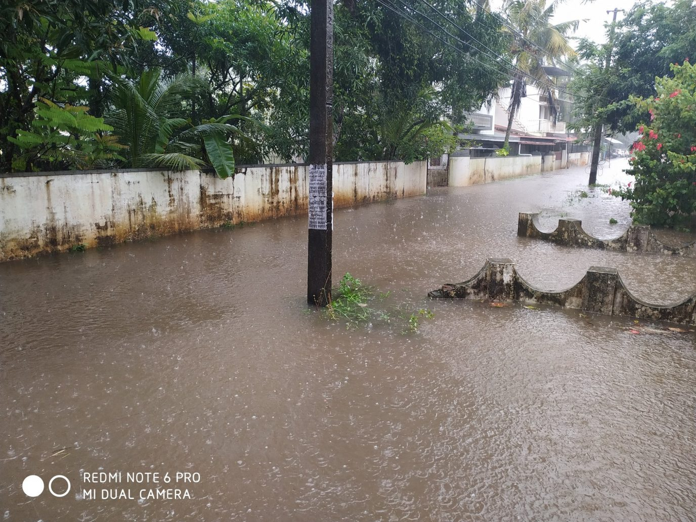 Heavy rain lashes Kerala, yellow alert in 11 districts