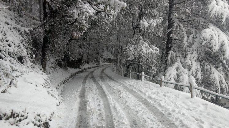 Uttarakhand, India, Snowfall, NewsMobile, NewsMobile India