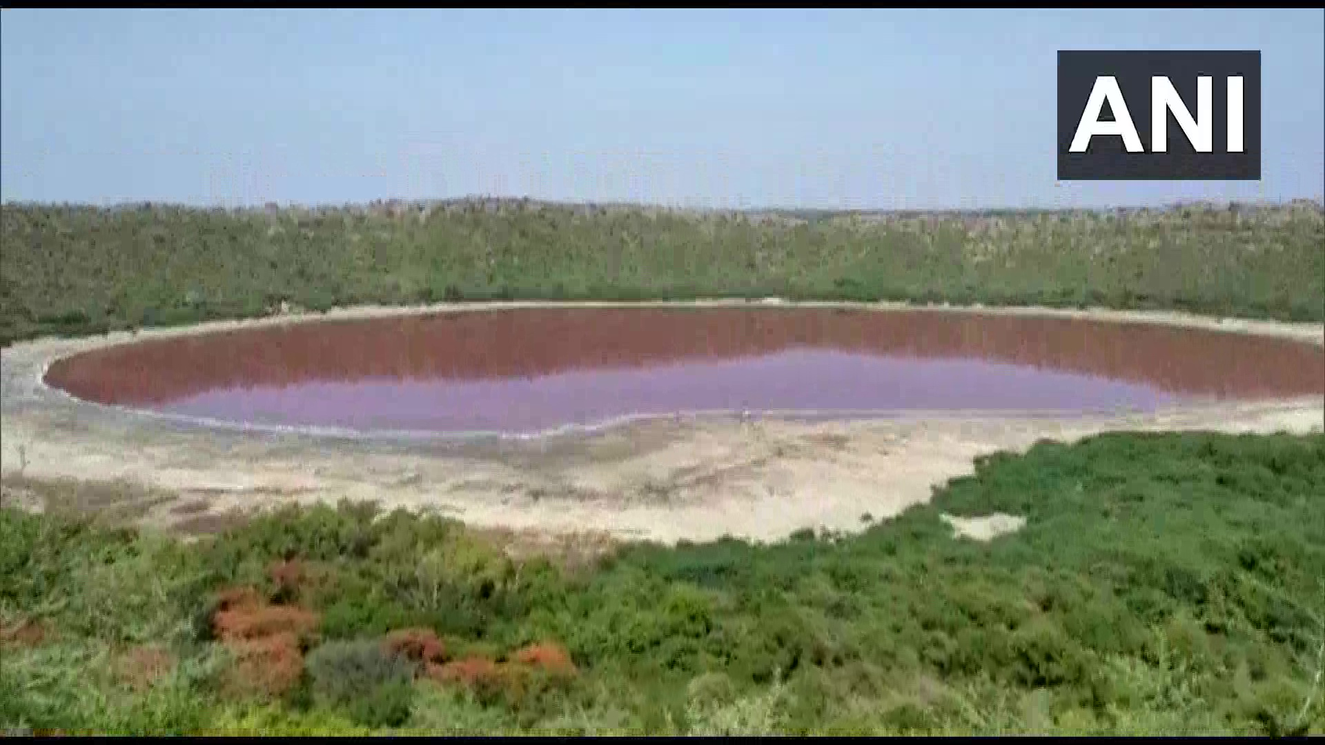 Lonar lake in Maharashtra turns pink