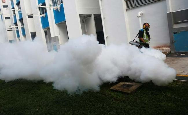 13 Indian, Zika virus, Singapore