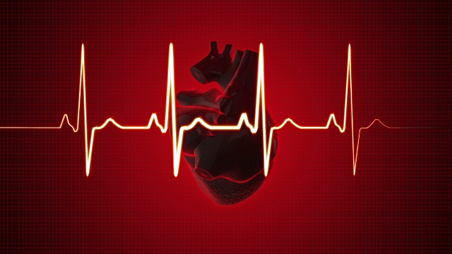 heart attack., mammalian species, , protein called NCX1, Congenital heart disease, cardiac crescent , University of Oxford, foetus develops, human heart, 16 days after conception,