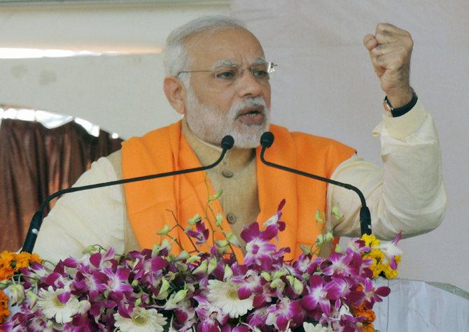 Prime Minister, Narendra Modi, Chief Minister, Akhilesh Yadav, donkey, Gujarat, Uttar Pradesh, battle for States