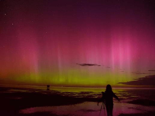 Sun's corona, Tasmania's skyline, magnetic field, Aurora Australis, New Zealand, News 4 kids, News for kids, kids news