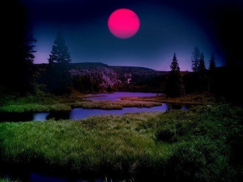 Pink Moon in April 2017,Easter, Full Fish Moon.,, Egg Moon, Full Sprouting Grass Moon