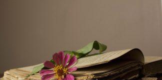 Books, Reading, Habit, Library, Joy, Lifestyle, Life, Novels, Comics, NewsMobile