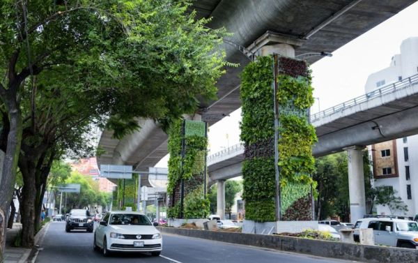 Gurugram, vertical gardens, beat, pollution, MCG, NewsMobile, Mobile News, India