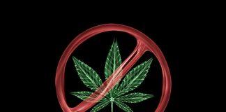 Drug, Cannabis, New Year, New Year eve, NCB, Delhi, Noida, Amity, Delhi University, JNU