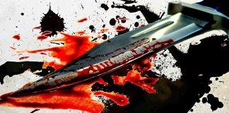 Murder case, Raju Gehlot, Neetu Solanki, Delhi, Gurugram, Crime branch, NewsMobile, india