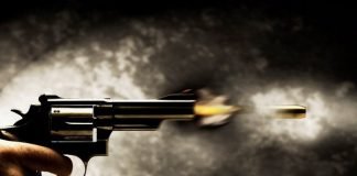 Boy, Violence, Gun, Sister, Video Games, Shot, NewsMobile, Mobile News, India, World