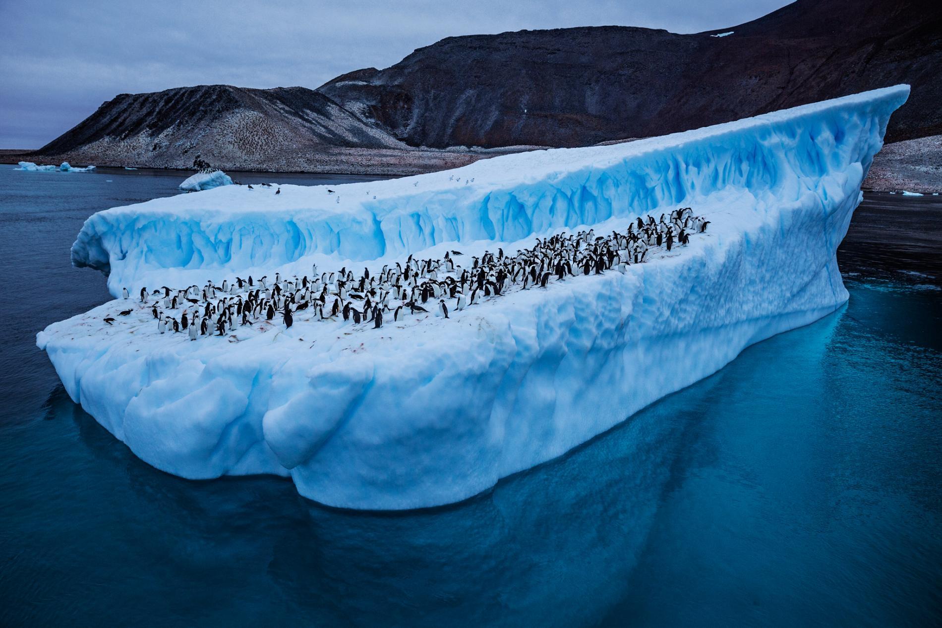 7.1 magnitude earthquake strikes near Antarctica
