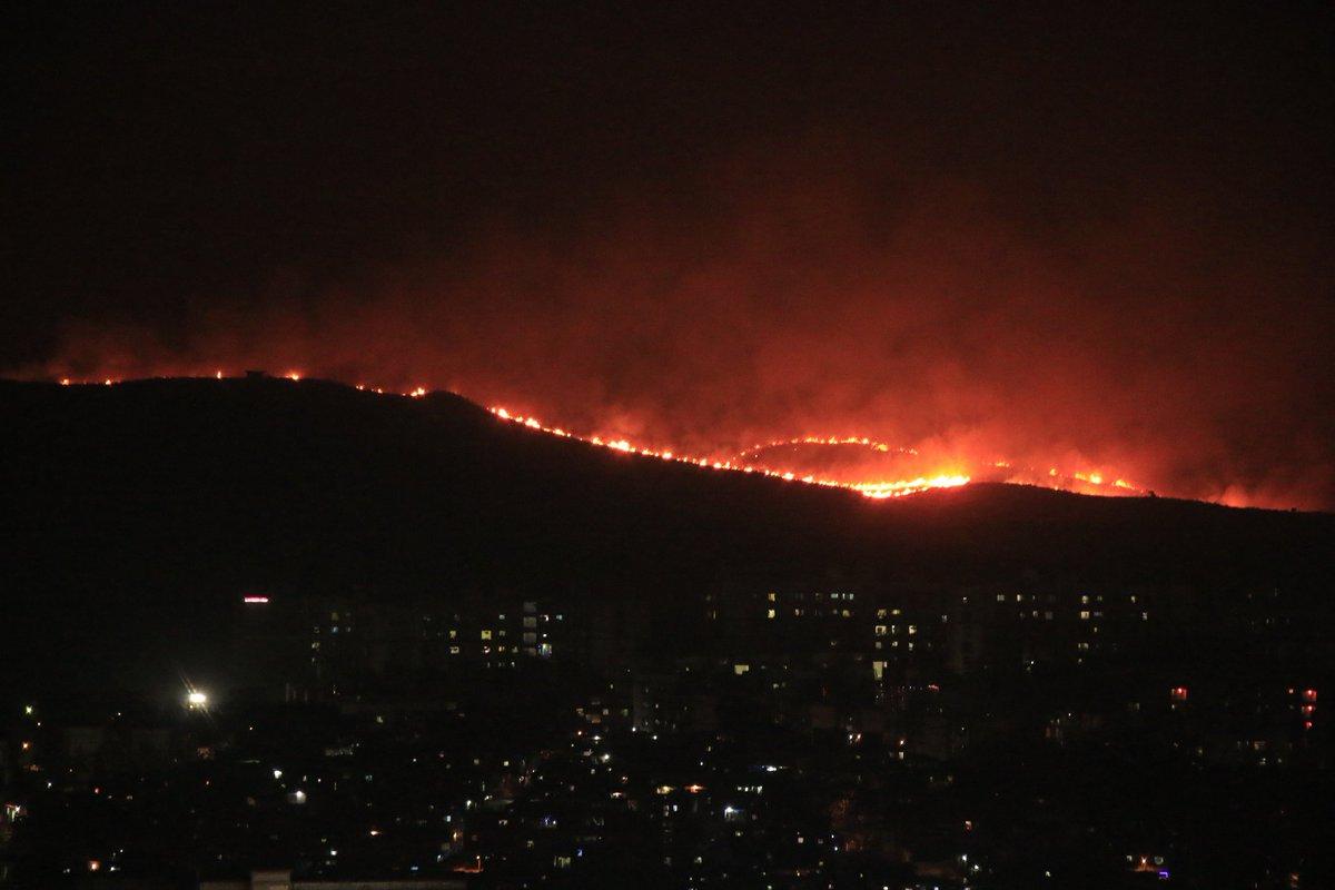 Mumbai, Goregaon, Sanjay Gandhi National Park, Aarey Colony, Fire, Breaks, New Mobile, News Mobile India