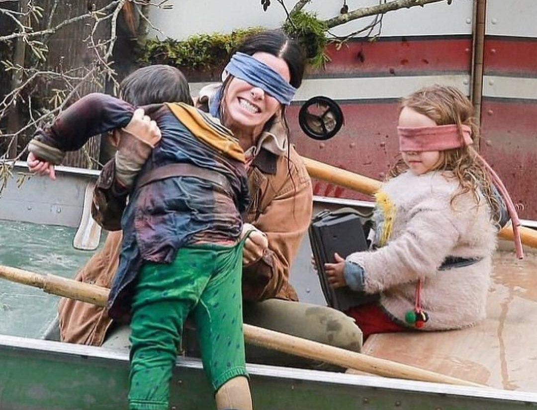 Do NOT try this at home: Netflix says NO to 'Bird Box Challenge'