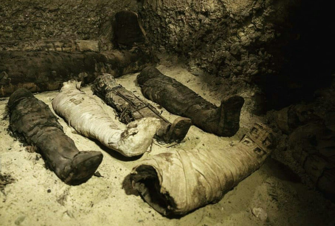 More than 40 mummies discovered by archaeologists in Upper Egypt