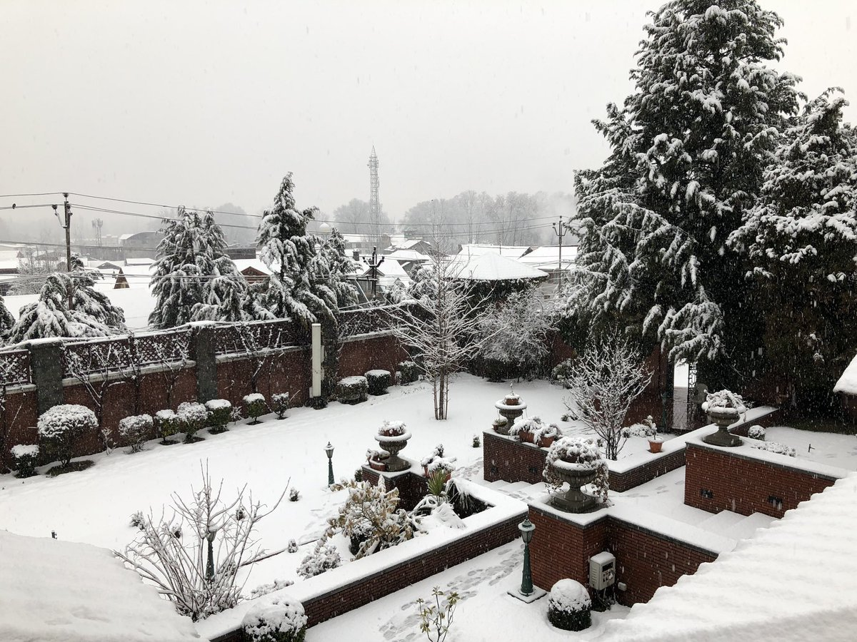 In Pictures: It's white-on-white for J&K and Himachal Pradesh with fresh snowfall
