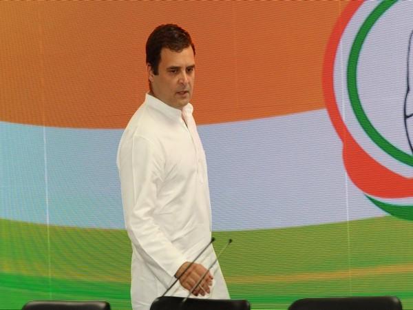 Rahul Gandhi, Amethi, Wayanad, Lok Sabha Elections 2019, Congress Working Committee, CWC, Sonia Gandhi, Rajdeep Singh Sujewala, News Mobile, News Mobile India