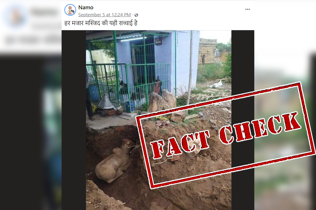 Fact Check: No, Idol Of Hindu Deity Nandi Was NOT Found During Excavation Around Mosque; Here's The Truth